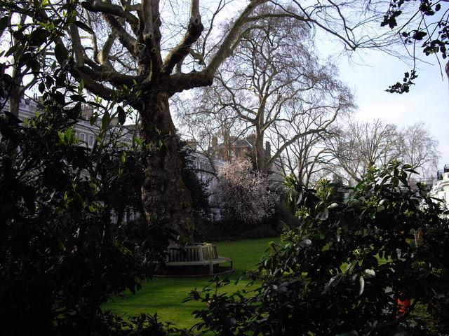 Onslow Gardens