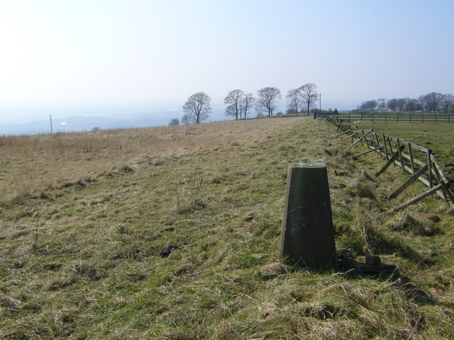 Werneth Low trig