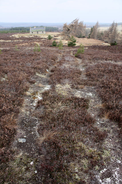 Moorland track south of Reroppie
