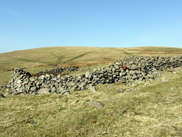 Sheepfold below Cold Law