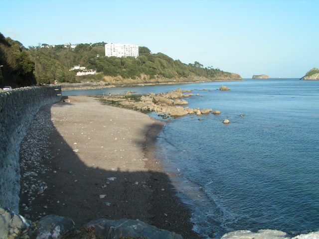 Meadfoot Beach