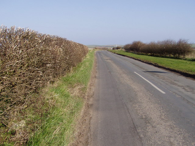 Looking Down Bempton Lane