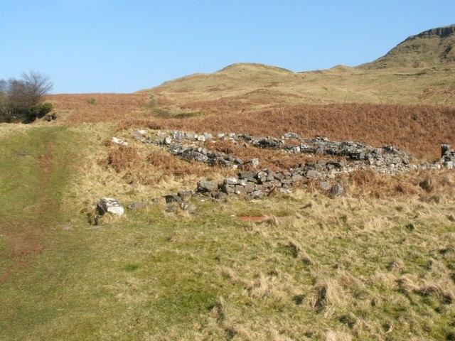 Disused sheepfold