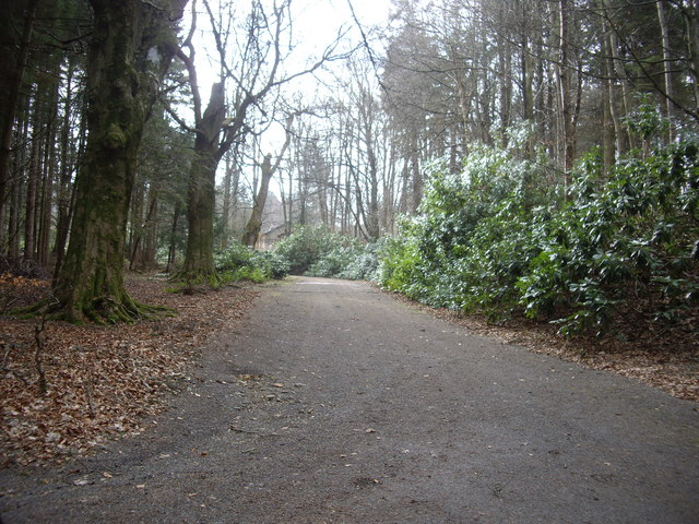 Access to Edinglassie Lodge