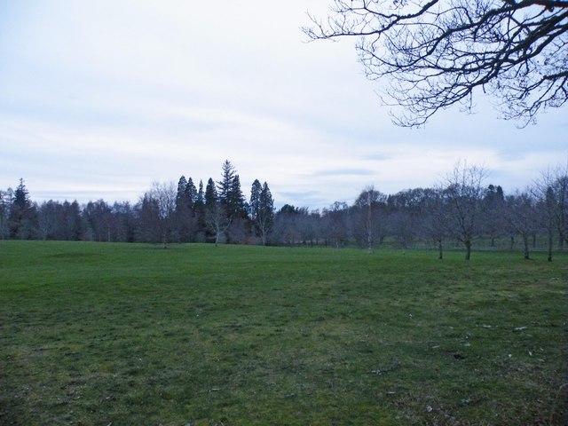 Cawdor Castle pasture land from near Castle gates