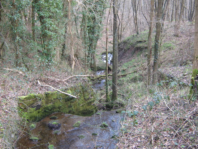 Stream in Lower Lady Park Wood, Consall Nature Park