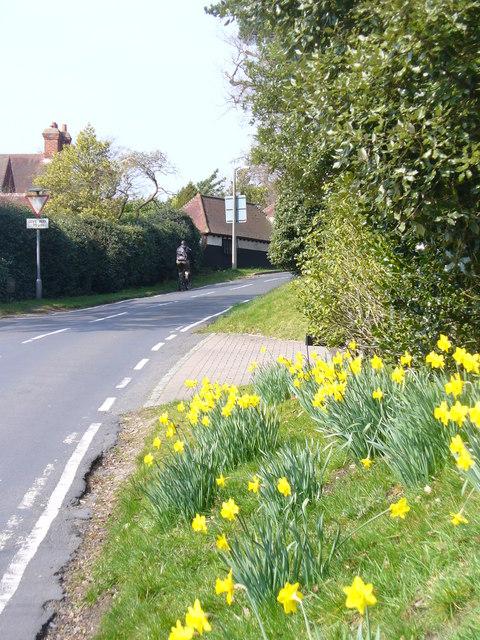 Hook Hill Lane