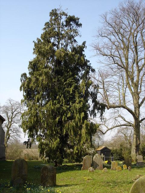 Playford churchyard