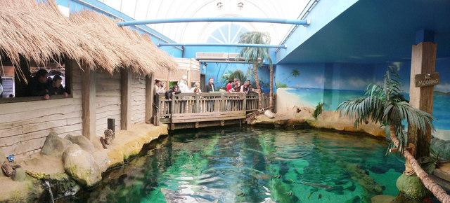 Bournemouth : Bournemouth Aquarium