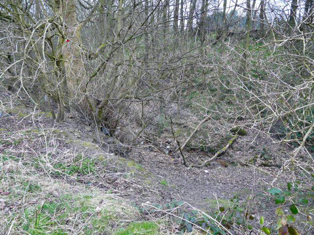 Werneth Brook