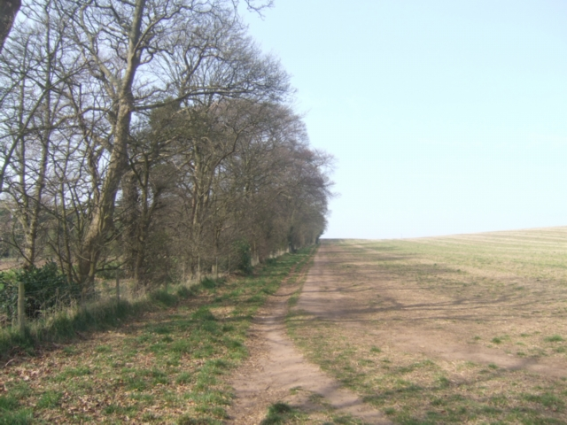 Springtime on the Monarch's Way