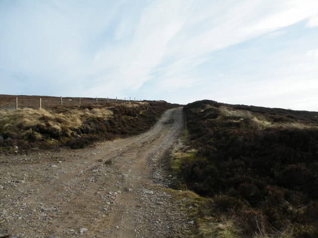 Track going to Carn Mòr  and Daless ford