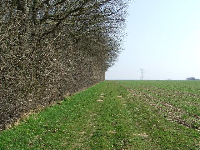 Burstall Long Wood
