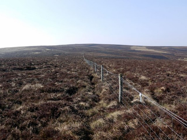 Fence through deep heather between Wether Cairn and St David's Cairn