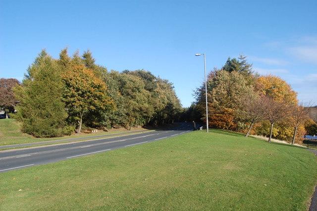 Riverview Drive, Dyce