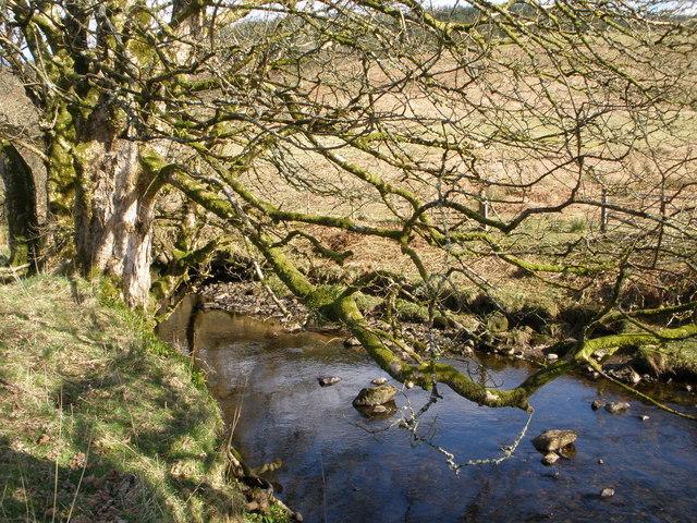 River Auchalick