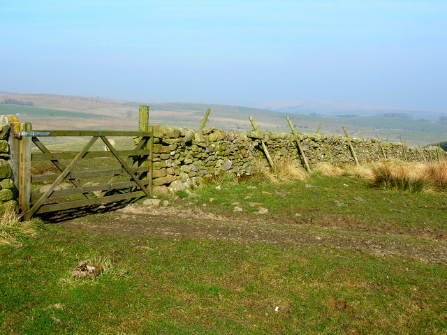 Gate and wall on Hellifield Moor