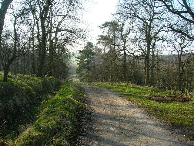Dacre Lane