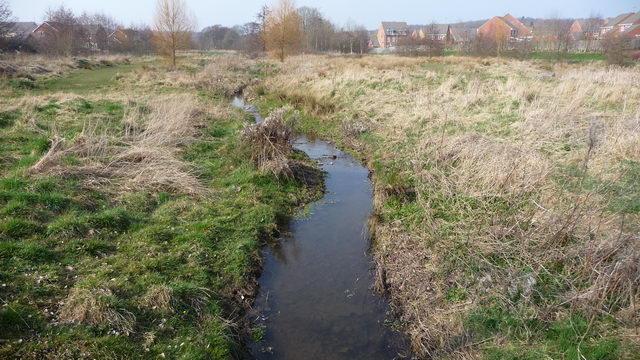 Batchley Brook
