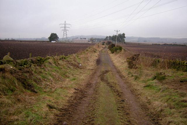 View of the Rosie Roadie looking north towards Forfar / Lunanhead Road