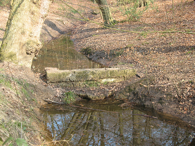 Epping Forest: stone weir