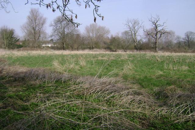 River Avon floodmeadows, Warwick