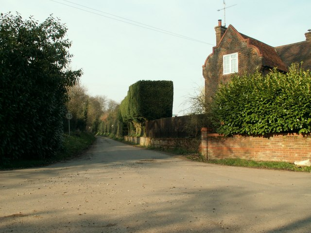 The road that leads to Albury Hall