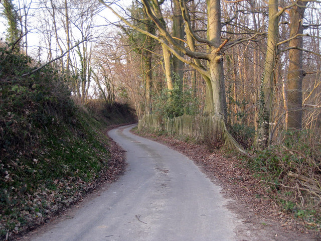 Partridges Lane