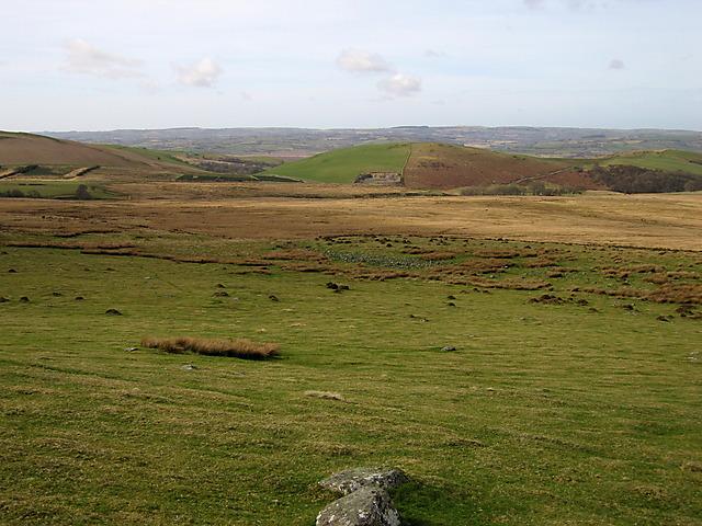 Northwestern slope of Bryngwyn Bach