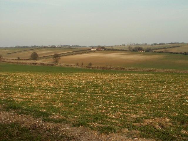The fields around Dane End