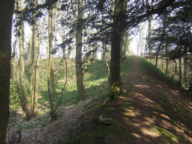 Wychbury Hill Fort - Eastern end