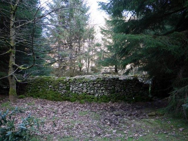 Sheepfold east of Kidlandlee