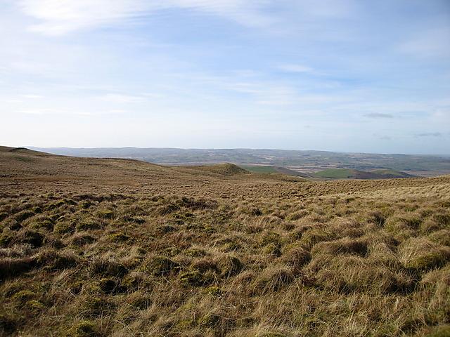 Bog west of Garn Gron