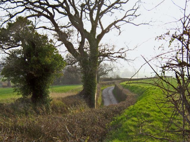 Lane to Rexworthy Farm [1]