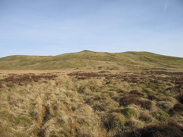 Bog between Garn Gron and y Bryn