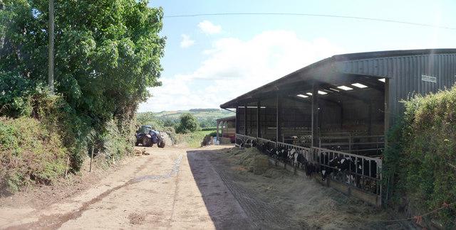 Mid Devon : Peadhill Lane