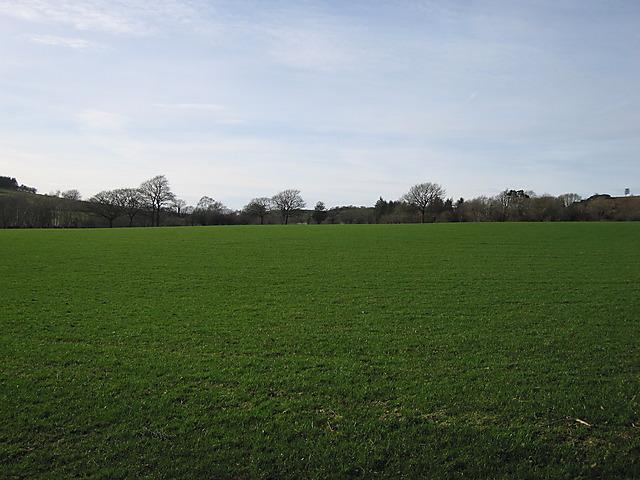 Pasture near Pantycraf