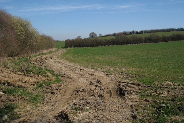 Farm Track and Footpath