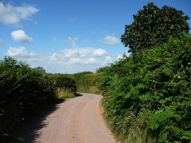 Mid Devon : Barton Hill Country Road