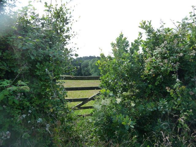 Mid Devon : Countryside Gate