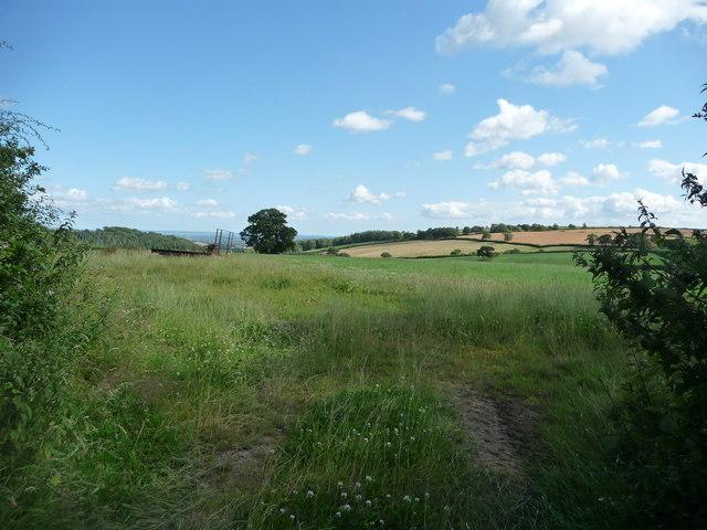 Mid Devon : Devon Countryside