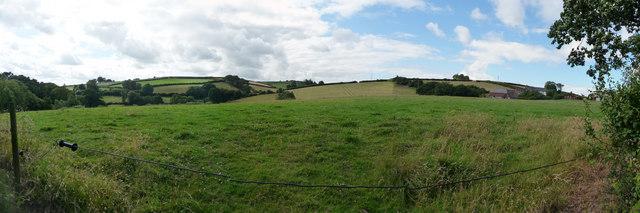 Mid Devon : Countryside Greenery
