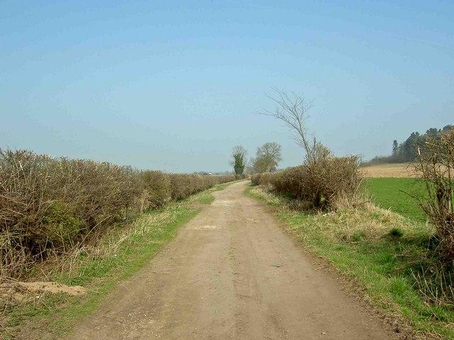 Theaker Lane