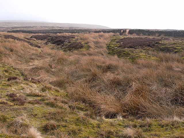 Clough below Thack Moor