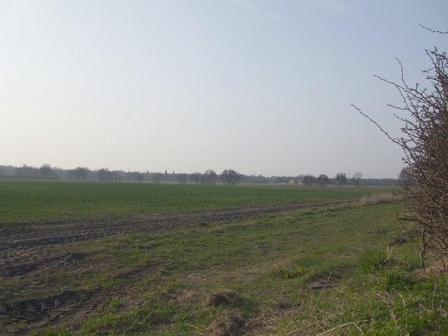 Fields to Redmoor Farm