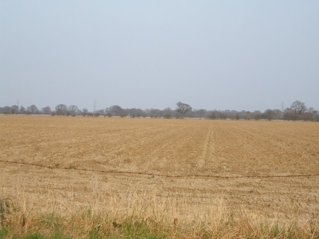 Fields off Northfield Road