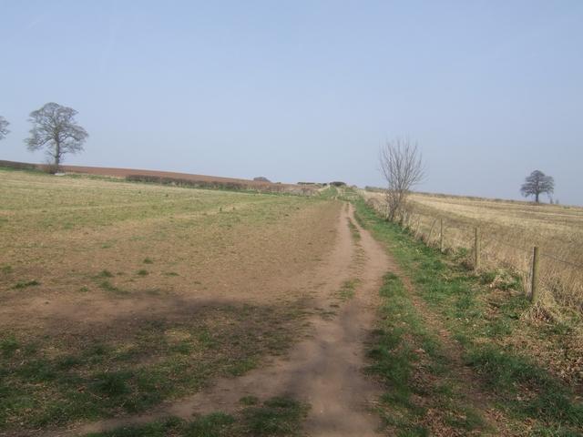 Footpath to Burys Hill