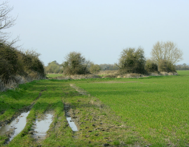 2009 : Beyond the end of Cowleaze Lane
