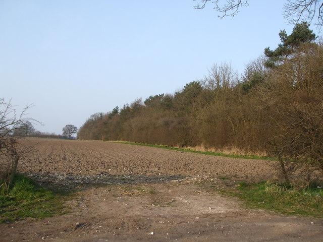Aughton Plantation