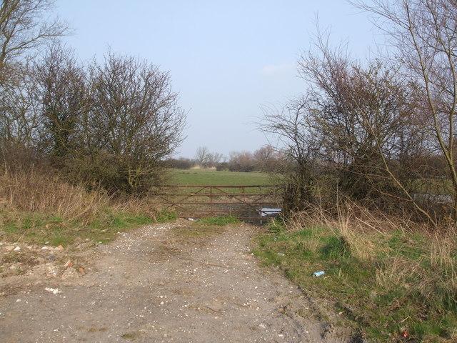 Rusty Gate to grazing land